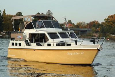 Hollandia 1080 C Seepferdchen 12